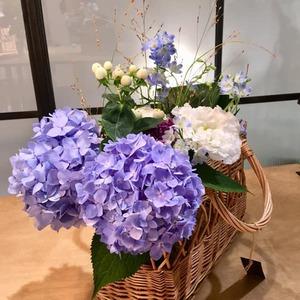 8/21,22 水・木曜レッスン あふれる紫陽花 講師 菊井百合子