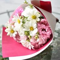 「ピンクなぜかわいい!?」9/4.5.7